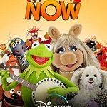 Маппеты сегодня (Muppets Now)